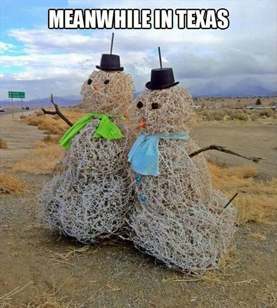 Texas Dealing With Winter