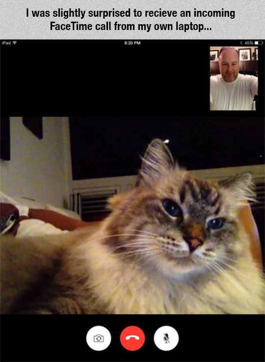 Unexpected Facetime Call