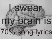 my brain is 70% song lyrics