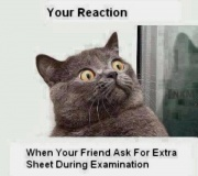your reaction