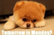 Tommorow is monday